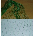 China Extruded Plastic Anti Bird Netting wholesale