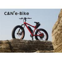 China Fat Tire Electric Sand Bike With Full Suspension , High Speed Womens Fat Tire Beach Cruiser wholesale