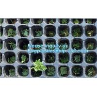 China plastic nursery tray seedling tray have different numbers cups,Plastic Flowers Seedling Hydroponics Nursery Trays, BIO wholesale