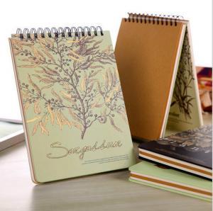 China Professional Design Team Manufacturer Supply Spiral Notebook, Paper Notebook, School Noteb wholesale