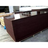 China Brown Film Faced Shutter Plywood (FFP059) wholesale