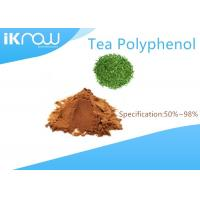 China Cas 84650-60-2 Green Tea Polyphenols For Food / Medicine / Daily Chemical wholesale