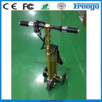 China Fastest Folding Three Wheel Electric Scooter bicycle Motor Bike , Electric Vehicle wholesale