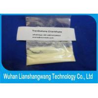 CAS 472-61-546 Muscle Building Trenbolone Powder Trenbolone Enanthate Tren E