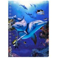 Buy cheap New Design 3D PET Cover Lenticular Spiral A5 Notebook For School And Office Gifts from wholesalers