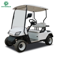 China 2 Seats Electric golf cart with 48V Battery/ Mini Electric golf cart hot sales to Europe on sale