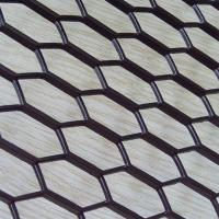 China Expanded Metal Mesh(LT-1551) wholesale