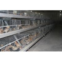 China Myanmar Chicken Farming A Frame Automatic Hen Cage & Battery Chicks Cage & Chicken Coop with 120 Birds for Sale wholesale