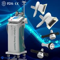 China Professional Cryolipolysis Slimming Machine For Fat removal  And body shaping wholesale