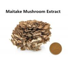 China Improving Immunity Maitake Mushroom Extract , 30% Polysaccharides Maitake Mushroom Powder wholesale