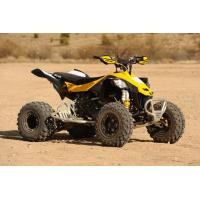 China Can-Am DS 450 / Can-Am DS 250 free shipping wholesale