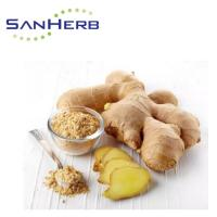 China Water Soluble Ginger Root Extract Powder Gingerol 1% - 20% From Supercritical CO2 wholesale