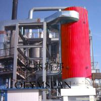 China Electric Gas Fired Thermal Oil Boiler 1.6 Mpa With Horizontal And Vertical wholesale