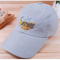 custom promotional baseball sports caps&golf  hats  3D  embroidery