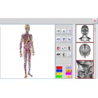 China Auto Scan Health Analyzer Machine Bioresonance NLS System Metatron Hunter 4025 wholesale
