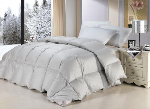 Adults Loft Beds Images