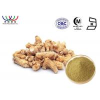 China Anti - Cancer Asian Ginseng Extract , Ginseng Extract Powder Lowers Blood Sugar Levels on sale