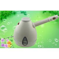 China Hand Held Portable Facial Steamer Of Ion Spray , Black / White wholesale