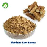 China alcohol-free eleuthero products siberian ginseng root extract 0.8%-1.8% Eleuthero B+E HPLC wholesale