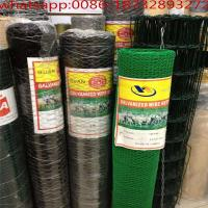 China 6ft chicken wire/rabbit wire mesh/chicken wire for sale/poultry net/chicken wire price/chicken mesh fencing /wire nettin wholesale