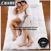Gold Quality for 5 Stars Hotel Cheap Wholesale Mattress Topper Filling with Pure White Feather Down