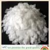 China supply of High purity Potassium hydroxide/KOH/Caustic potash/cas:1310-58-3 wholesale
