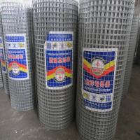 China Electric galvanized welded wire mesh for construction wholesale