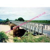 China Multiple Span Delta Bridges With Intermediate Piers Various Engineering Industrial wholesale