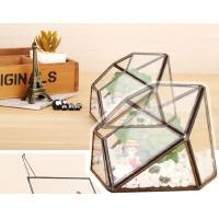 China Irregular Eternal Mini Geometric Glass Terrarium Micro Landscape Brass Black wholesale