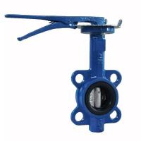 China Manual Cast Iron Butterfly Valve Wafer Pattern With Flexible Flange End wholesale