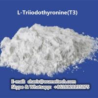 China Polvo esteroide crudo de (T3) del L-Triiodothyronine de los esteroides anabólicos del deportista para el crecimiento humano wholesale