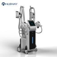 Buy cheap 2018 newest  freeze fat body slimming 4 handles cryolipolysis from wholesalers