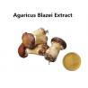 China Agaricus Blazei Extract Promoting Hematopoiesis , Ji / Pine Medicinal Mushroom Powder wholesale