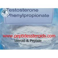 Pharma Grade Raw Steroid Powders Testosterone Steroid Hormone / Phenylpropionate