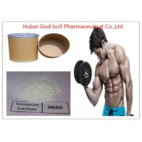 Muscle Mass Testosterone Anabolic Steroid , CAS 315-37-7 Raw Testosterone Enanthate Steroid