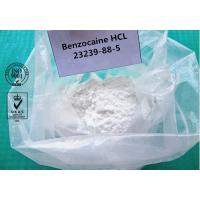 99% Benzocaine Hydrochloride Cas 23239-88-5 White Powder Local Anesthetic Agents