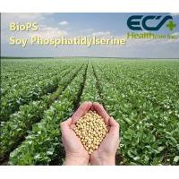 China Positive Organic Soy Lecithin Powder Age Associated Memory Impairment / Cognitive Decline wholesale