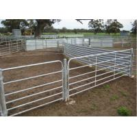 Cattle Feeder Images