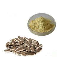 China Baby Food Additives Organic Plant Protein Powder Natural Sunflower Seed Extract on sale