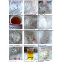 China Cutting Cycle Nandrolone Decanoate Steroid Phenylpropionate (NPP) Deca Durabolin wholesale