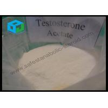 White Raw Testosterone Acetate Steroid Protein Powder , Bodybuilding Forum Steroids