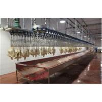 China Chicken Slaughtering Production Line wholesale