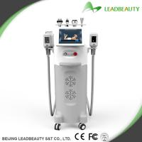 China cryolipolysis fat freezing slimming machine for body sculpting wholesale