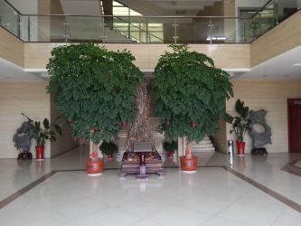 Jiangyin Fangyuan Ringlike Forging And Flange Co., Ltd.