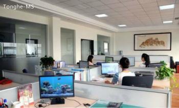 Shenzhen Tonghe Technology Co., Ltd.