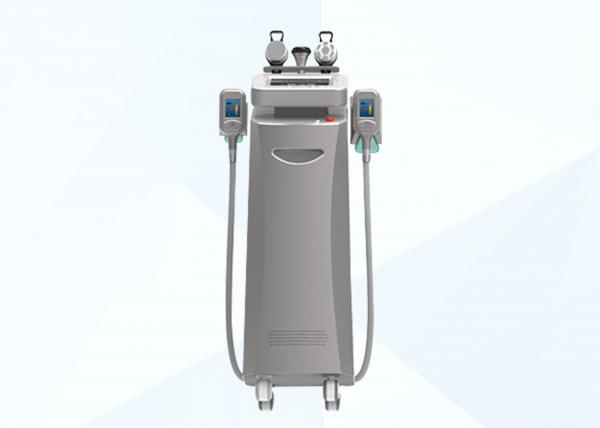 Quality Stationary Cryolipolysis Fat Freezing Slimming Beauty Equipment for Home Use for sale