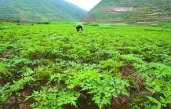 GanSu Yu Family Natural Herb Products Co., Ltd.