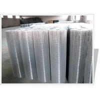 China Welded wire mesh (stainless steel welded wire mesh/Galvanized welded wire mesh) wholesale
