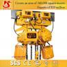 China Electric customized 10 ton-5m chain hoist wholesale