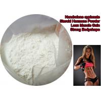 China Bulking Cycle Nandrolone Decanoate Steroid Powder / Deca Durabolin Muscle Mass Steroid wholesale